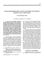 Osteoarthritis-related changes in human articular cartilage.
