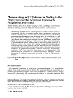 Pharmacology of [3H]mianserin binding in the nerve cord of the American cockroach  Periplaneta americana.
