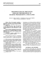 Phosphocitrate prevents disease progression in murine progressive ankylosis.