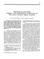 Proteoglycans from normal and degenerate cartilage of the adult human tibial plateau.