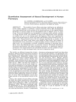 Quantitative assessment of neural development in human premolars.