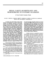 Renal vascular histology and morphometry in systemic sclerosis. a casecontrol autopsy study