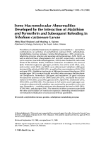 Some macromolecular abnormalities developed by the interaction of malathion and permethrin and subsequent refeeding in Tribolium castaneum larvae.