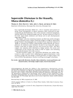 Superoxide dismutase in the housefly  Musca domestica (L.)