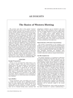 The Basics of Western Blotting.