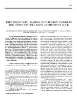 Treatment with gamma-interferon triggers the onset of collagen arthritis in mice.