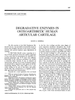 Degradative enzymes in osteoarthritic human articular cartilage.