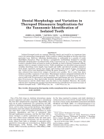 Dental morphology and variation in theropod dinosaursImplications for the taxonomic identification of isolated teeth.