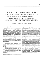 Effect of complement and polymorphonuclear leukocyte depletion on experimental skin lesions resembling systemic lupus erythematosus.