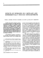 Effects of estrogen on cartilage and experimentally induced osteoarthritis.