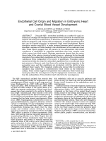 Endothelial cell origin and migration in embryonic heart and cranial blood vessel development.