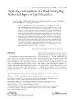Flight-oogenesis syndrome in a blood-sucking bugBiochemical aspects of lipid metabolism.