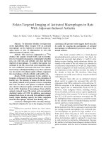 Folate-targeted imaging of activated macrophages in rats with adjuvant-induced arthritis.