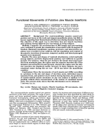 Functional movements of putative jaw muscle insertions.