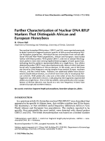 Further characterization of nuclear DNA RFLP markers that distinguish African and European honeybees.