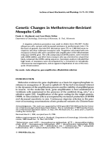 Genetic changes in methotrexate-resistant mosquito cells.