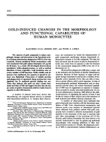 Gold-induced changes in the morphology and functional capabilities of human monocytes.