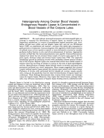 Heterogeneity among ovarian blood vesselsEndogenous hepatic lipase is concentrated in blood vessels of rat corpora lutea.