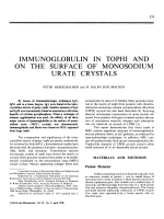 Immunoglobulin in Tophi and on the Surface of Monosodium Urate Crystals.