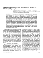 Immunohistochemical and histochemical studies of pituitary ╬▓-lipotrophs.