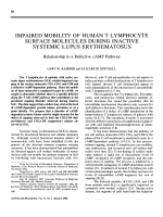 Impaired mobility of human t lymphocyte surface molecules during inactive systemic lupus erythematosus. relationship to a defective camp pathway