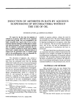Induction of arthritis in rats by aqueous suspensions of mycobacteria without the use of oil.