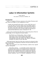 Labor in information systems.