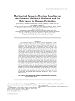 Mechanical Impact of Incisor Loading on the Primate Midfacial Skeleton and its Relevance to Human Evolution.