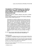Metabolism of [14C]cholesterol in Manduca sexta pupaeIsolation and identification of sterol sulfates free ecdysteroids and ecdysteroid acids.