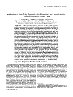 Modultion of the Golgi apparatus in stimulated and nonstimulated prolactin cells of female rats.