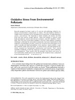 Oxidative stress from environmental pollutants.