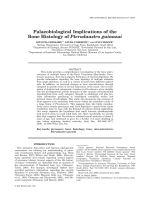 Palaeobiological Implications of the Bone Histology of Pterodaustro guinazui.