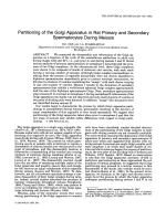Partitioning of the Golgi apparatus in rat primary and secondary spermatocytes during meiosis.