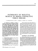 Pathology of skeletal muscle in mixed connective tissue disease.