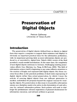 Preservation of digital objects.