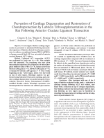 Prevention of cartilage degeneration and restoration of chondroprotection by lubricin tribosupplementation in the rat following anterior cruciate ligament transection.
