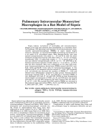 Pulmonary intravascular monocytesmacrophages in a rat model of sepsis.