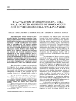Reactivation of streptococcal cell wall-induced arthritis by homologous and heterologous cell wall polymers.
