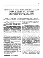 Serosal mast cells maintain their viability and promote the metabolism of cartilage proteoglycans when cocultured with chondrocytes.