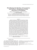 Shouldering the Burdens of Locomotion and PostureGlenohumeral Joint Structure in Prosimians.