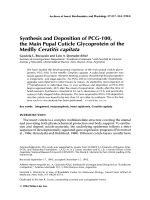 Synthesis and deposition of PCG-100  the main pupal cuticle glycoprotein of the medfly Ceratitis capitata.