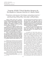 Targeting ADAM-17notch signaling abrogates the development of systemic sclerosis in a murine model.