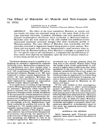 The effect of marcaine on muscle and non-muscle cells in vitro.