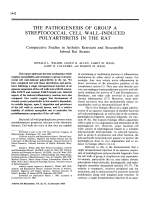 The pathogenesis of group a streptococcal cell wall-induced polyarthritis in the rat comparative studies in arthritis resistant and susceptible inbred rat strains.