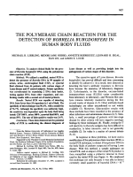 The polymerase chain reaction for the detection of borrelia burgdorferi in human body fluids.