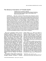 The sensory innervation of primate eyelid.