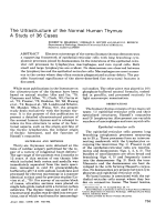 The ultrastructure of the normal human thymusA study of 36 cases.
