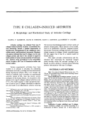 Type ii collagen-induced arthritis. A Morphologic and Biochemical Study of Articular Cartilage