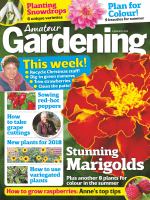 Amateur Gardening - 06 January 2018