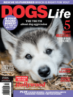 Dogs Life — January 08, 2018